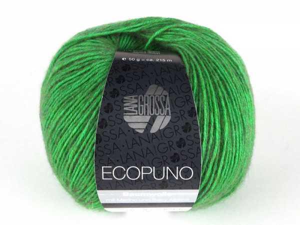 WOLG-ECOPUNO-041