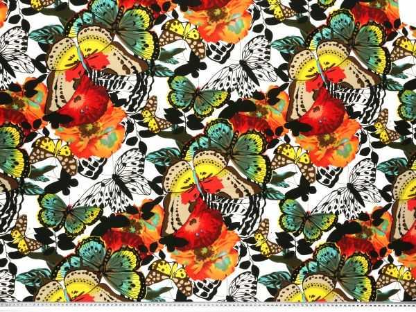 Acrylglasbilder Wandbilder aus Plexiglas® 125x50 Apfel Wasser Küche