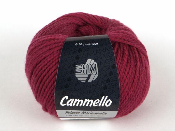 WOLG-CAMMELLO-010